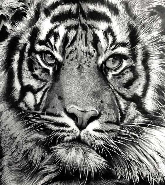 Katya M. Tiger portrait - photo 3