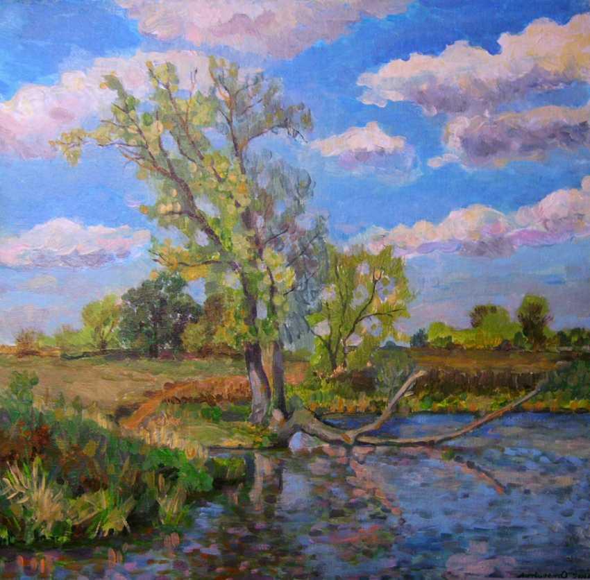 Oleg Lytvynenko. Pond on the Melniki. - photo 1