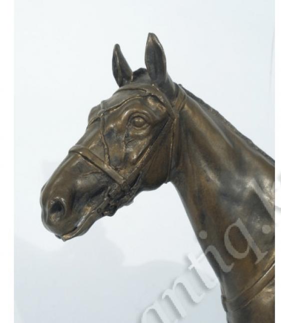 Cavalry hussars - photo 2