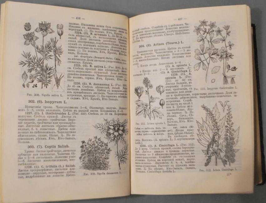 Flora of European Russia 1908 - photo 3
