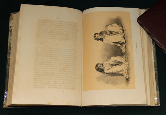 Essays 1862 27 lithographs - photo 2