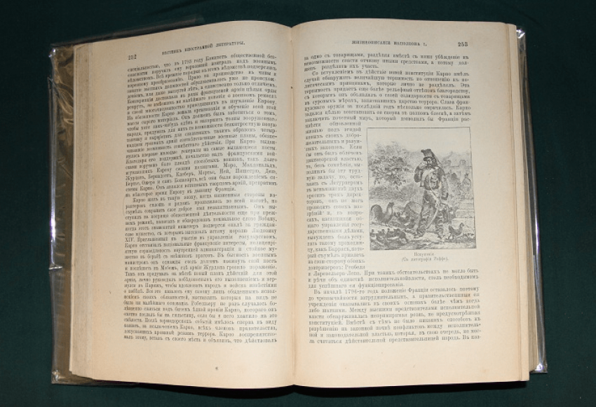 A new biography of Napoleon I, 1895 - photo 3