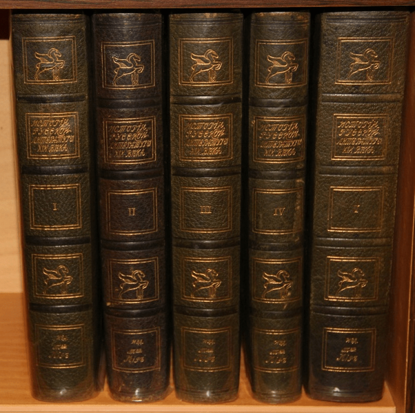 History of Russian literature of the XIX century. 1911 - photo 1