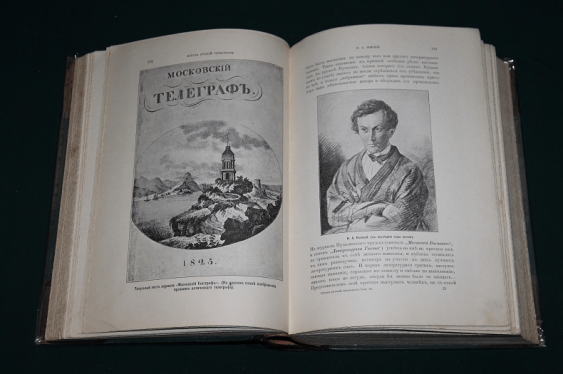 The history of Russian literature. Field, 1900 - photo 2