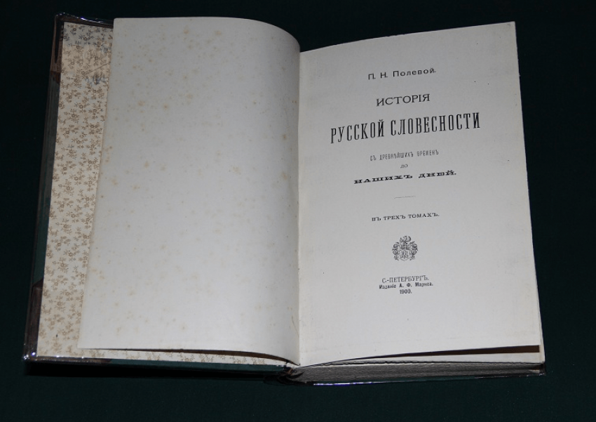 The history of Russian literature. Field, 1900 - photo 4