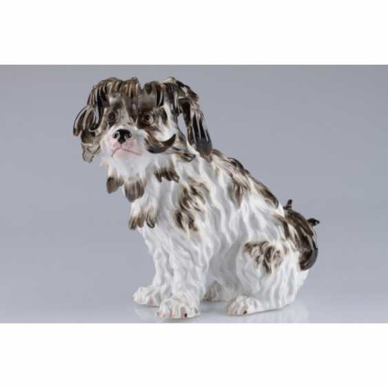 "A STATUETTE ""A DOG"". GERMANY, MEISSEN PORCELAIN FACTORY. - photo 1"