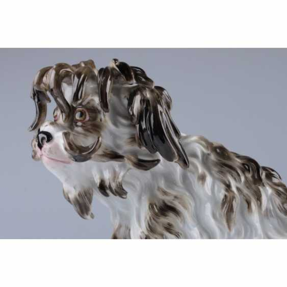 "A STATUETTE ""A DOG"". GERMANY, MEISSEN PORCELAIN FACTORY. - photo 3"