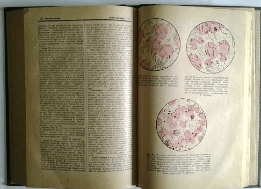 encyclopedia of practical medicine. - photo 4