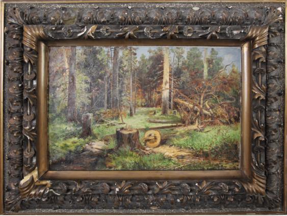 Forest landscape - photo 1