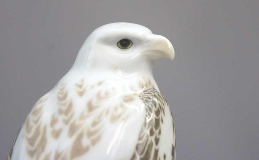Meissen Noble falcons on a rock base. 19 Jhr. 1 choice. - photo 5
