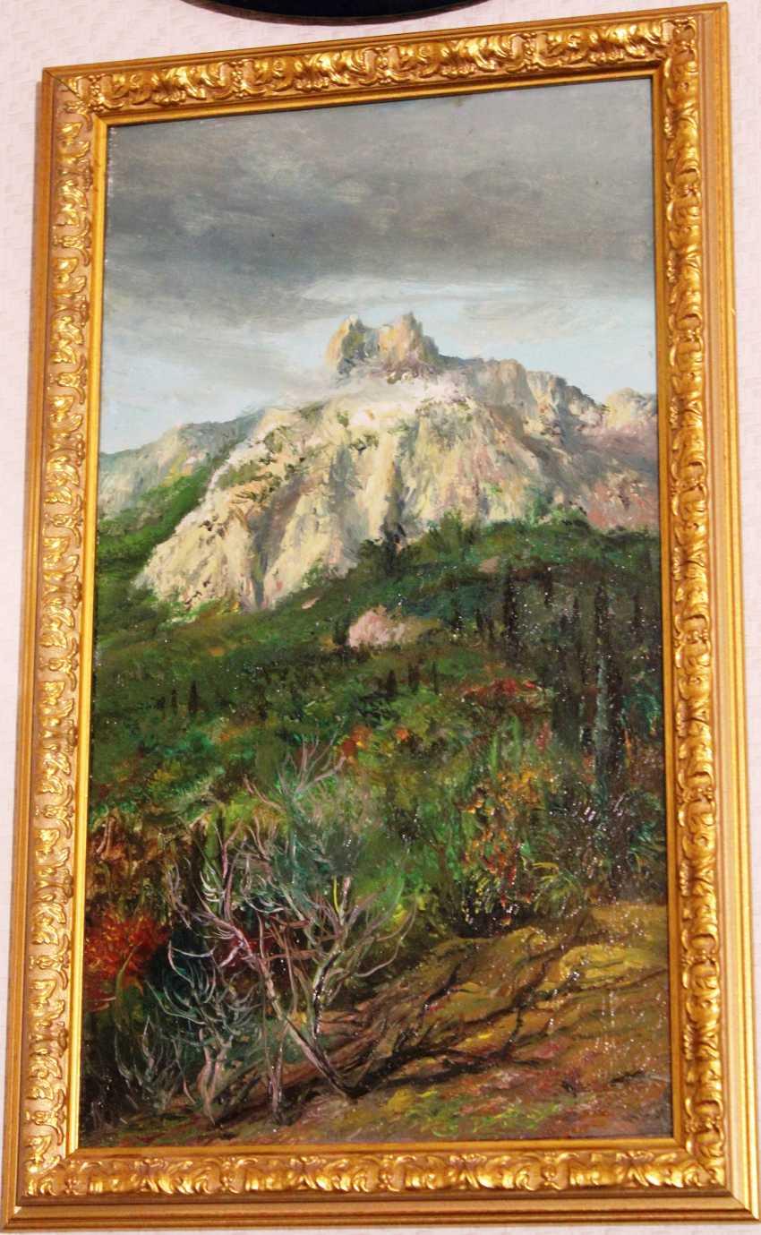 "Crimson Dyes N. M. ""Mountains"" - photo 1"
