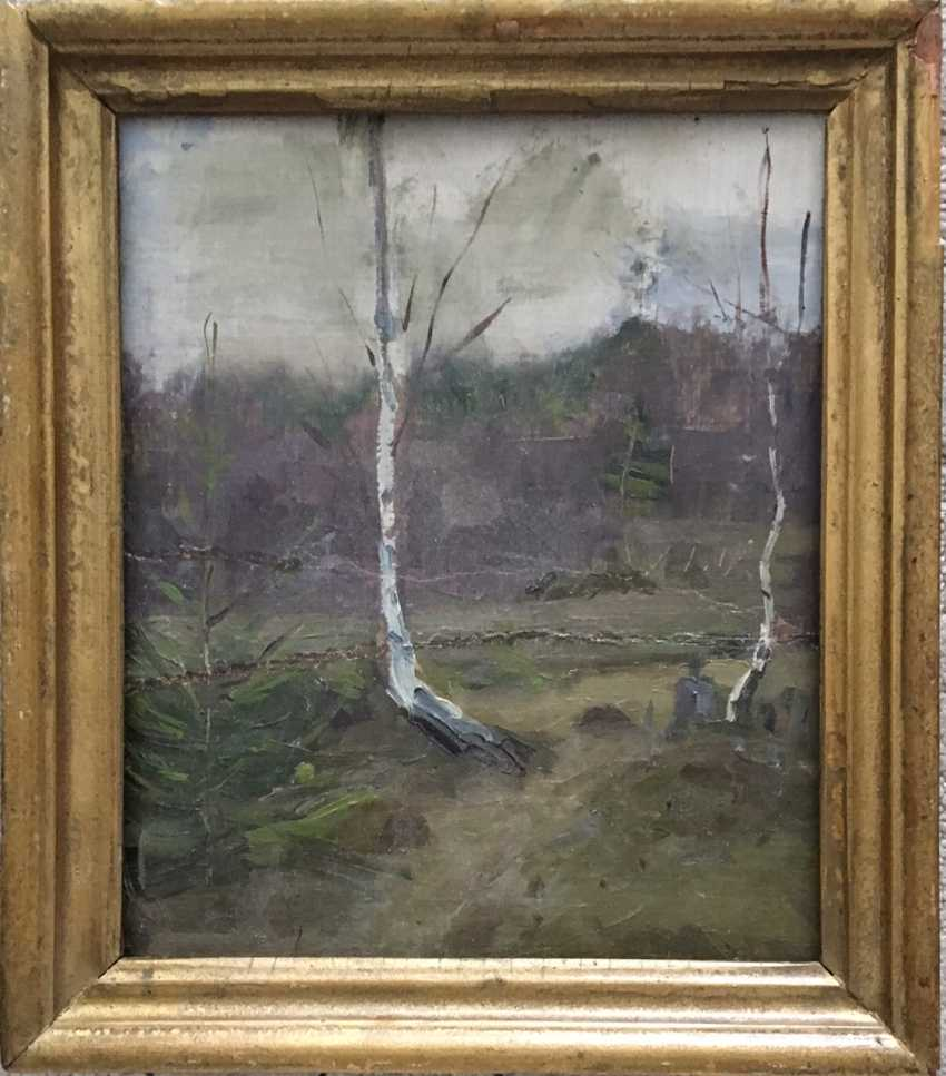 """Azgur (Gorelova) G. G. - """"Birches"""", 1950 - photo 1"""