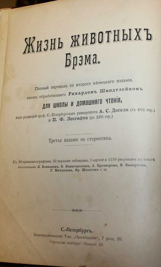 Bram. The life of animals. Russia, before 1917 - photo 3
