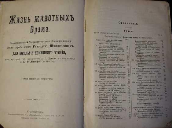 Bram. The life of animals. Russia, before 1917 - photo 8