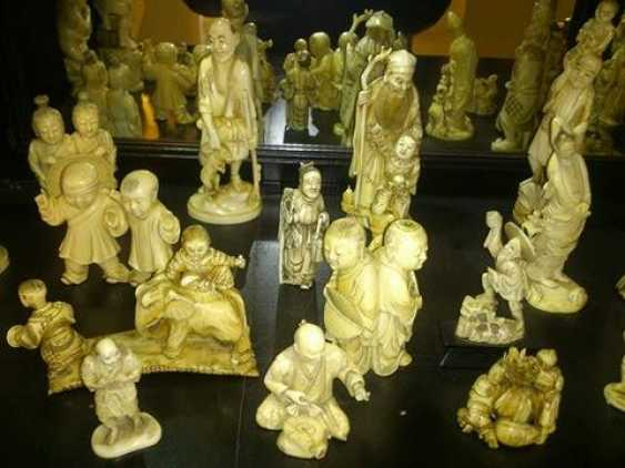 Ivory Collection - photo 1