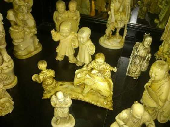 Ivory Collection - photo 15