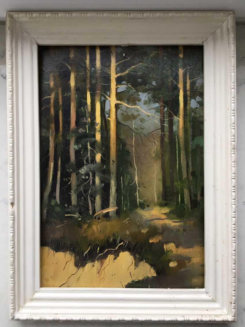 """""""Abhang im Wald"""", des zwanzigsten Jahrhunderts. - Foto 1"""