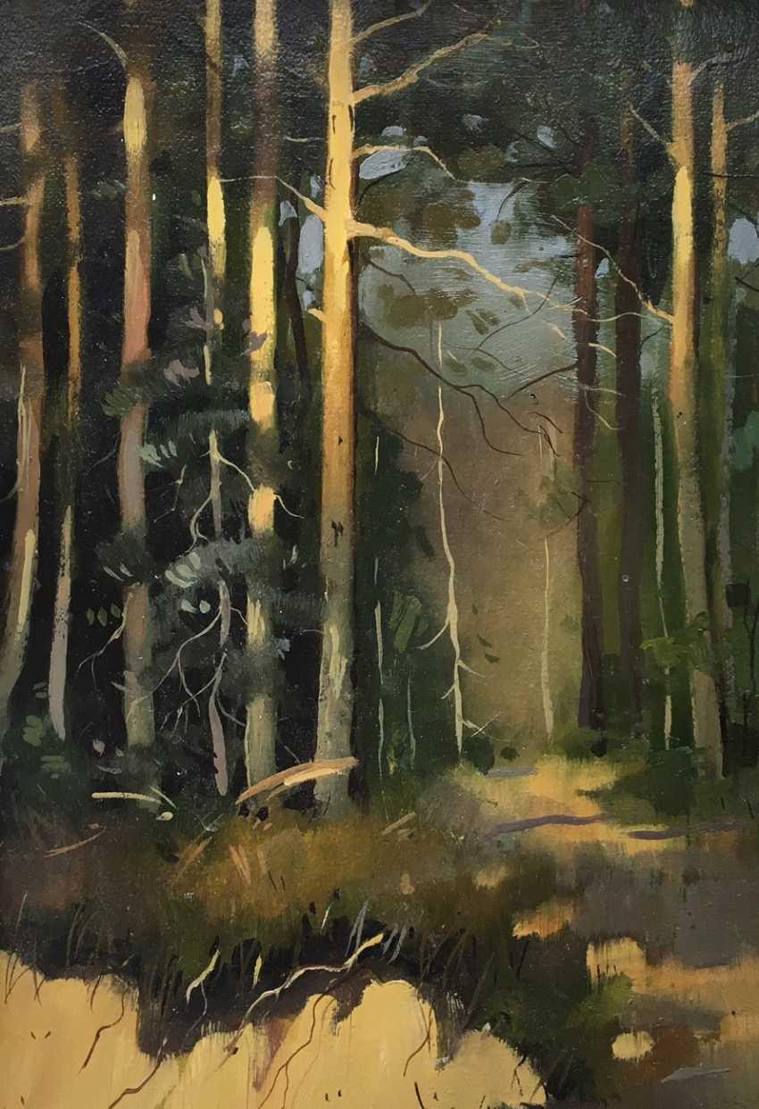 """""""Abhang im Wald"""", des zwanzigsten Jahrhunderts. - Foto 2"""