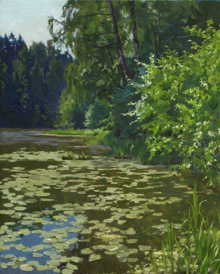 Konstantin Seleznev. Summer day - photo 1