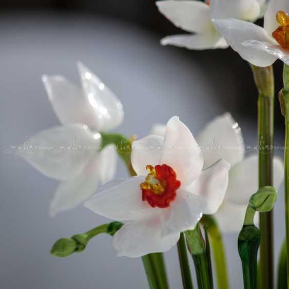 Oksana Parfentyeva. Floral arrangement SPRING IN middle-EARTH - photo 3