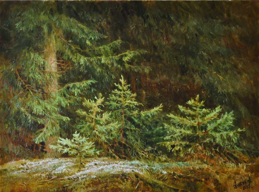 Alexey Anikin. Coniferous tale - photo 1