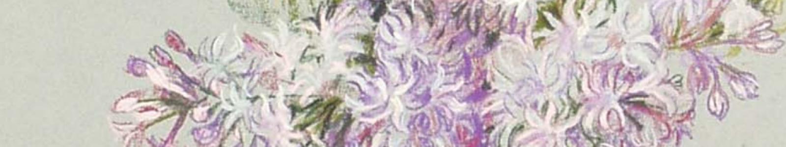Gallery Painter Svitlana Shevchenko