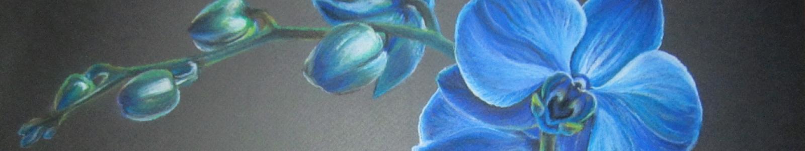 Gallery Painter Katerina Boyko