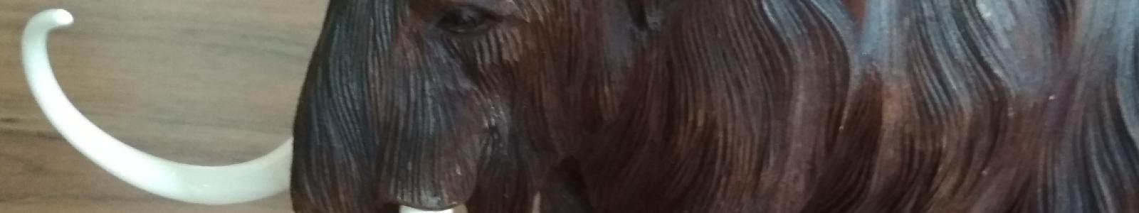 Gallery Painter Vladimir Realmammoth