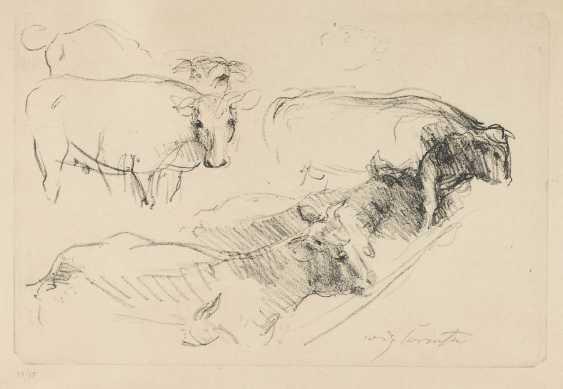 LOVIS CORINTH 1858 Tapiau/East Prussia - 1925 Zandvoort COWS - photo 1