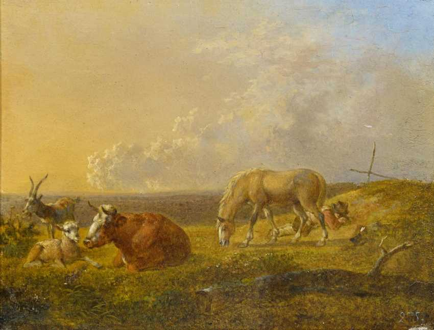 The Dresden School. Two paintings: the shepherds with their cattle in Arcadian landscapes. - photo 1