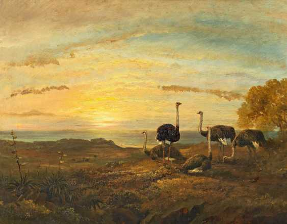 Rolando, Charles. Tropical evening with ostrich in front of the coast. - photo 1