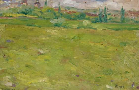 Perlmutter, Isaac. The spring landscape. - photo 1
