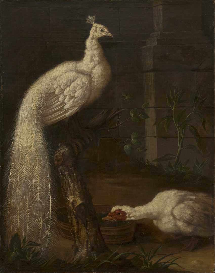 GROOTH, IVAN (1717-1801) A Goose and a White Peacock , signed and dated 1786. - photo 1