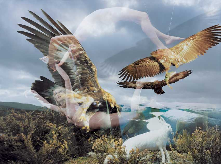 """KULIK, OLEG (B. 1961) Eagles, from the series """"Museum of Nature or New Paradise""""  - photo 1"""
