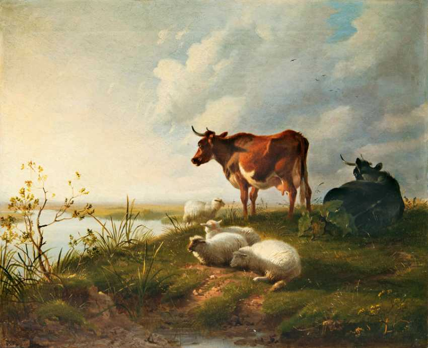 """Thomas George Cooper """"cows and sheep"""" - photo 1"""
