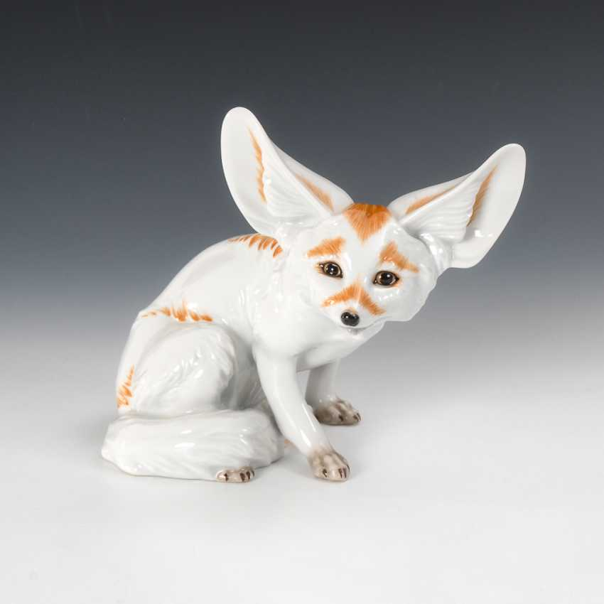 Desert Fox, The Augarten. - photo 1
