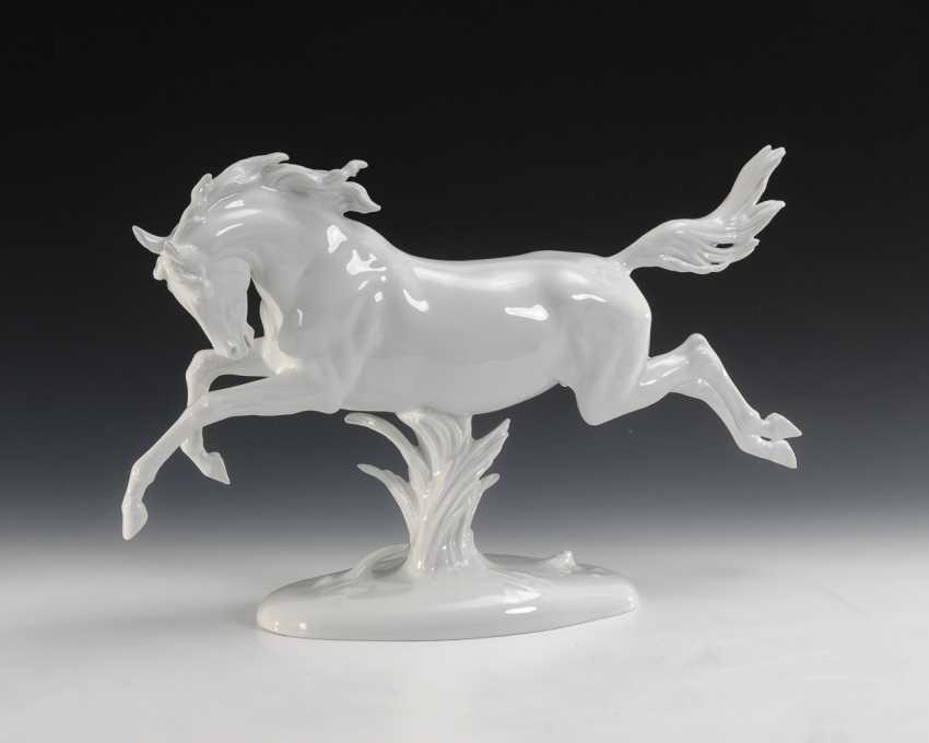 Springendes Pferd, Rosenthal. - Foto 1