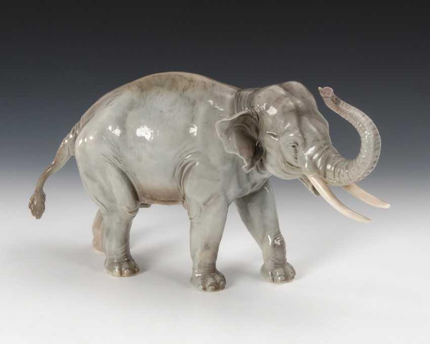 Elefant, Nymphenburg. - Foto 1