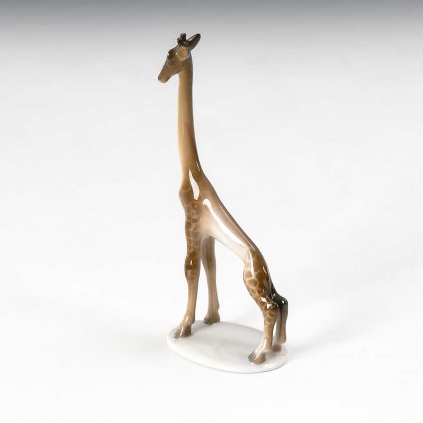 Groteske Art-déco-Giraffe, Rosenthal. - photo 1