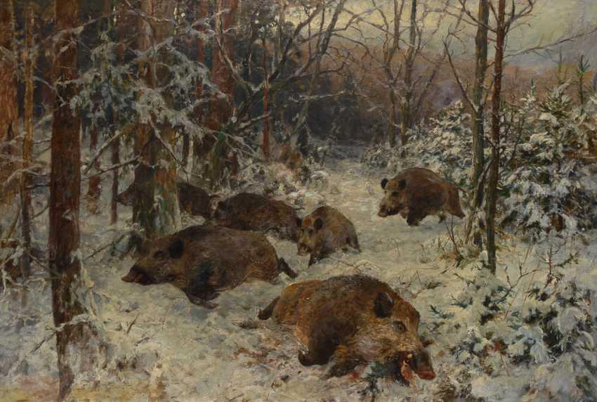 BRÜHL, Alfred Graf von: Wildschweine im Winterwald. - Foto 1