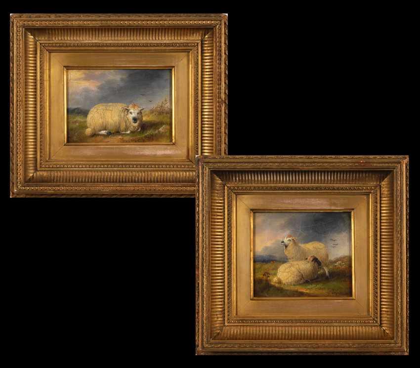 Englischer Tiermaler: Zwei Schafsbilder. - Foto 1