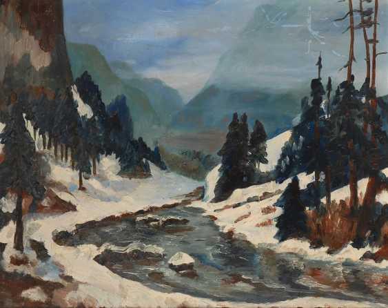 Sonnige Winterlandschaft. - Foto 1