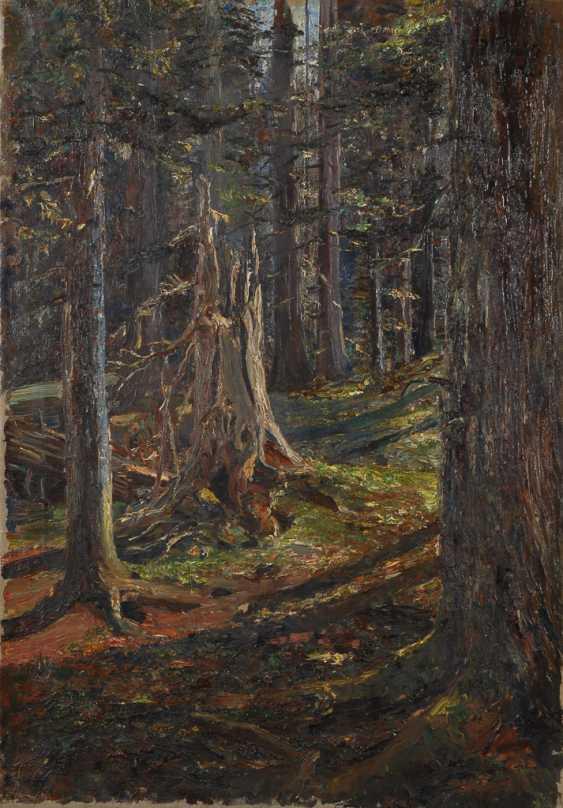 TILLMETZ, Rudolph: Baumstumpf im Wald. - Foto 1