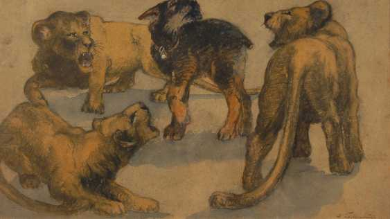 Indistinct marking depth: Three young lion and a dog. - photo 1
