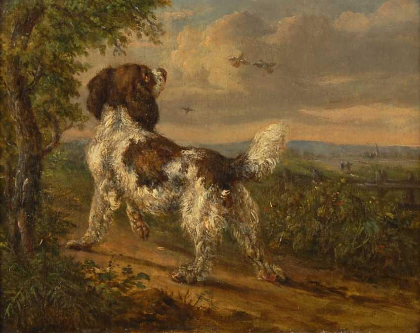 UnsignierTiefe: Jagdhund im Sonnenschein. - Foto 1