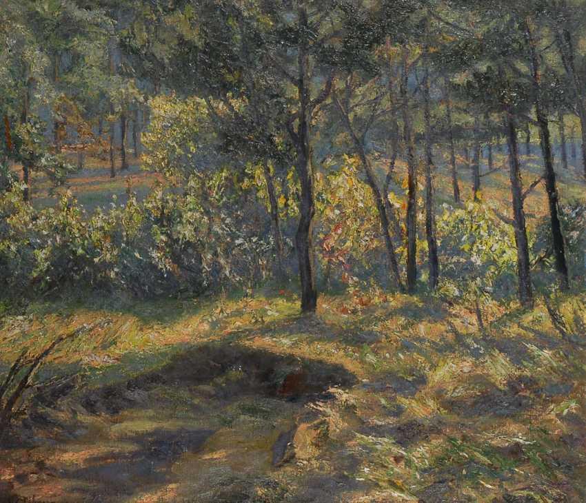WILDHAGEN, Fritz: Impressionistische Landschaft. - Foto 1