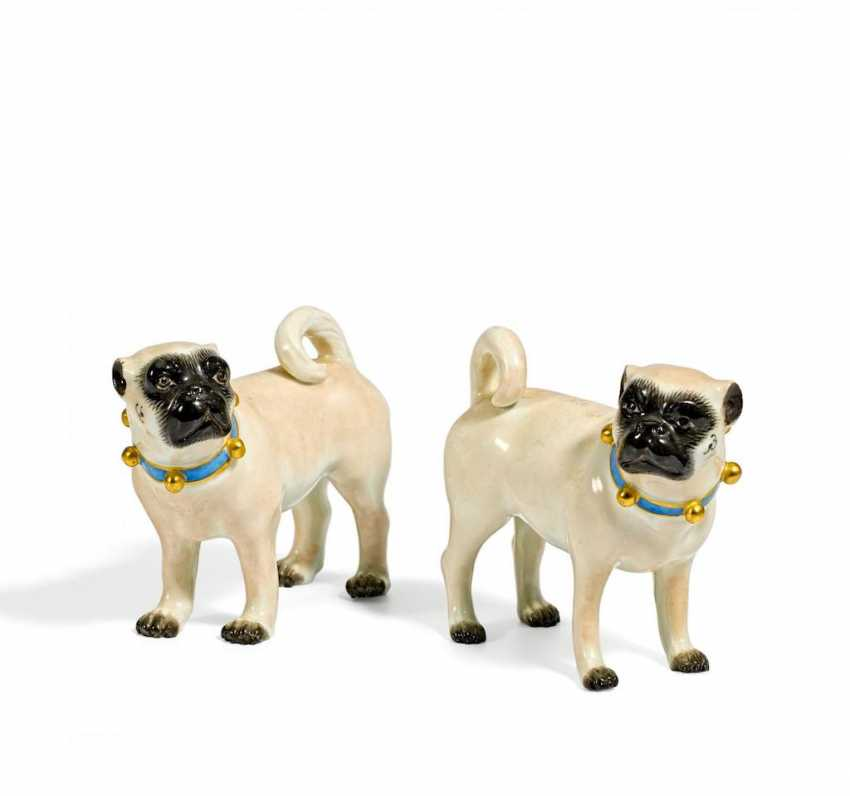 Two Pug Dogs - photo 1