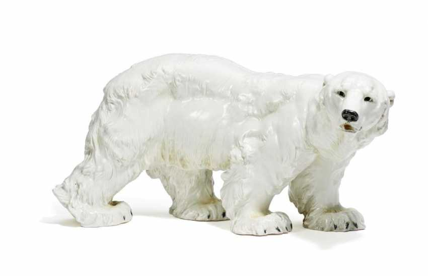 Großer Eisbär - Foto 1