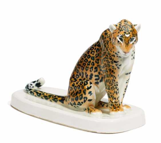 Leopard - Foto 1