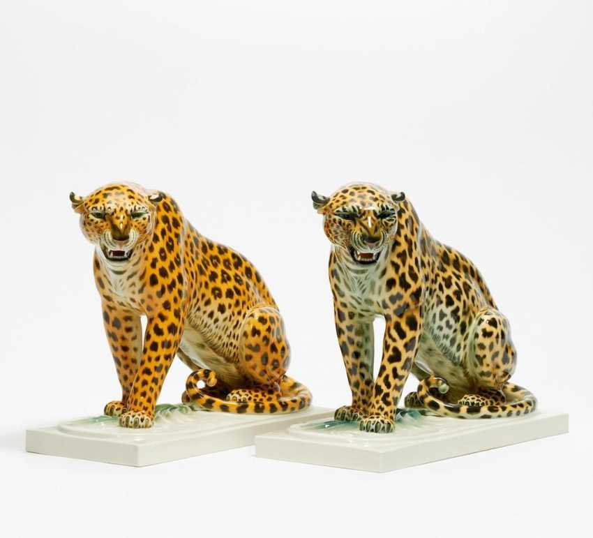 Two Leopards - photo 1